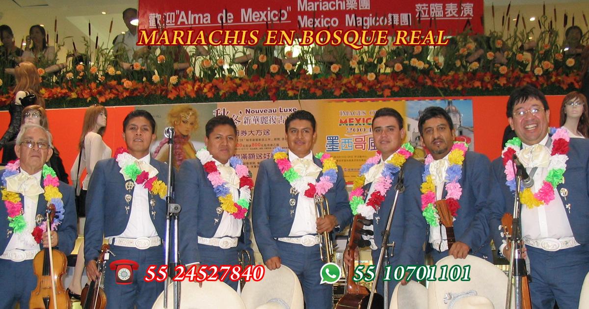 Mariachis en Bosque Real